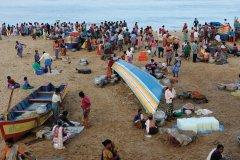 Vente de poisson sur la plage au retour de la pêche (© PATRICE ALCARAS)