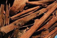 Bâtons de cannelle pour épicer vos plats. (© Author's Image)