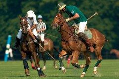 Match de polo à Chantilly (© FIFRANCK - FOTOLIA)