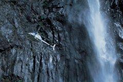 Hélicoptère longeant la cascade du Trou de Fer. (© D. Cati - Iconotec)