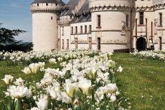 Le château de Chaumont-sur-Loire (© Crobard - Fotolia)