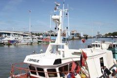 Flottille de chalutiers dans le port de Boulogne (© Olivier LECLERCQ)