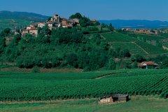 Le village de Ternand (© Arthur LEROY - Iconotec)