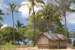 Habitat traditionnel du Mozambique. (© JamesHarrison - iStockphoto.com)