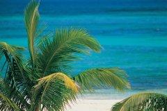 Akumal, petit paradis mexicain. (© Hugo Canabi - Iconotec)