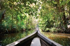 Backwaters Kerala, vers Kochi. (© byheaven)