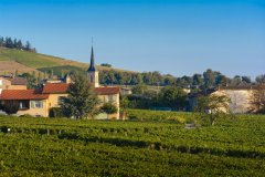 Village d'Odenas. (© Gaelfphoto - Fotolia)