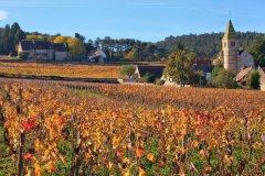 Vue sur Fixin. (© andre quinou - Shutterstock.com)
