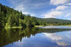 Miroir de la nature - lac de la Seigneurie. (© Olympixel)