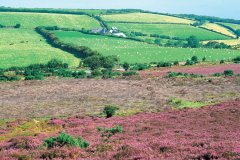 Parc national d'Exmoor. (© Alamer - Iconotec)