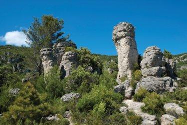 Forêt de pierres dans le cirque de Mourèze. (© Eric Teissedre)