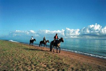 Randonnée à cheval. (© Sylvie FRANCOISE)