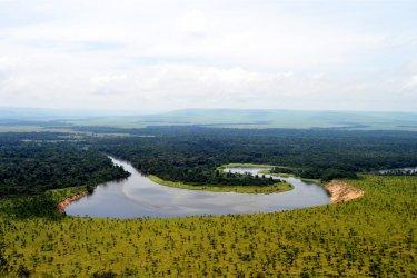 La Louna, dans la réserve Lésio-Louna. (© Benoît Lognoné)
