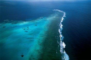Nouvelle-Calédonie : Récif corallien.
