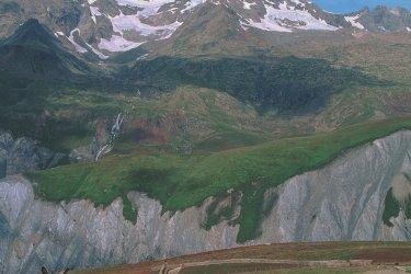 Troupeau sur les hauteurs des Deux-Alpes (© F. IREN & C. PINHEIRA - AUTHOR'S IMAGE)