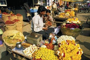 Vendeurs de rue à Jaïpur. (© Alamer - Iconotec)