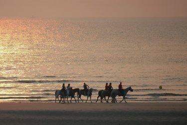Cavaliers sur la plage du Touquet (© André - Fotolia)