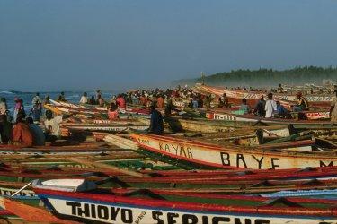 Village de pêcheurs de Kayar. (© Author's Image)
