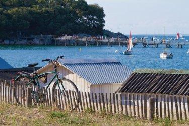 Noirmoutier à vélo (© Carré Pixel - Fotolia)