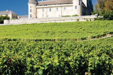 Le château de Rully (© PHB.CZ - FOTOLIA)