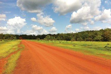 Brousse, piste reliant Kedougou à Salemata (début saison des pluies). (© Stéphanie BORG)