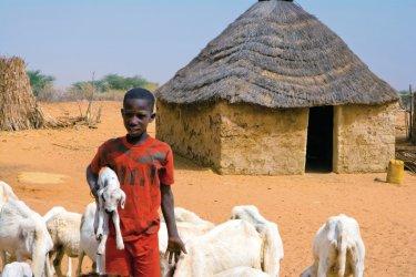 Village de brousse peul. (© Author's Image)