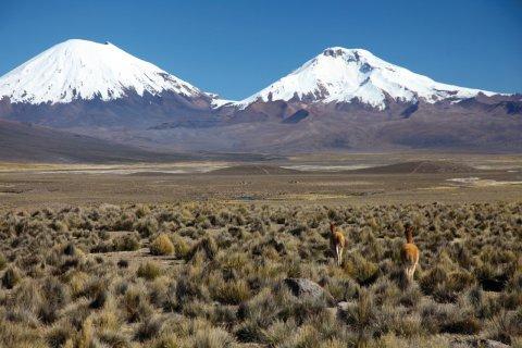 Les volcans Parinacota et Pomerape, vus depuis le village de Sajama. (© Arnaud BONNEFOY)
