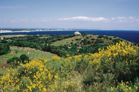 Côte Vermeille proche d'Argelès-Plage (© Nicolas Rung - Author's Image)