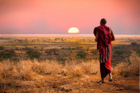 Serengeti National Park. (© Jo Crebbin / Shutterstock.com)
