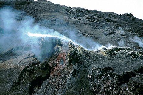 Fumée et gaz s'échappant du Piton de la Fournaise. (© Author's Image)
