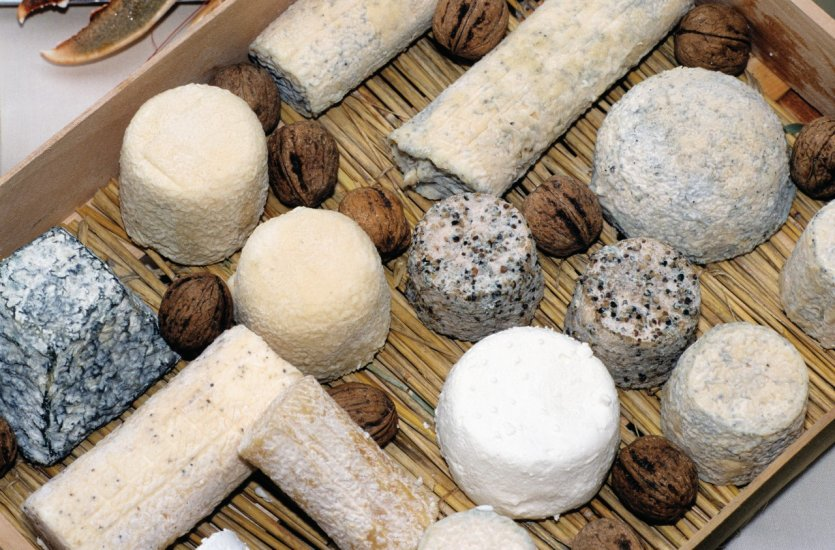 LES CONVIVES - Page 66 029001-charente-fromages-charentais