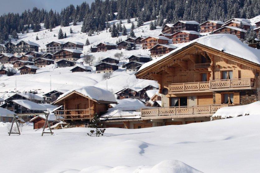 Le guide pratique petit fut stations de ski savoie - Office du tourisme les saisies ...