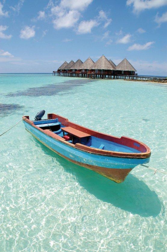 Maldives Tour Guide Association