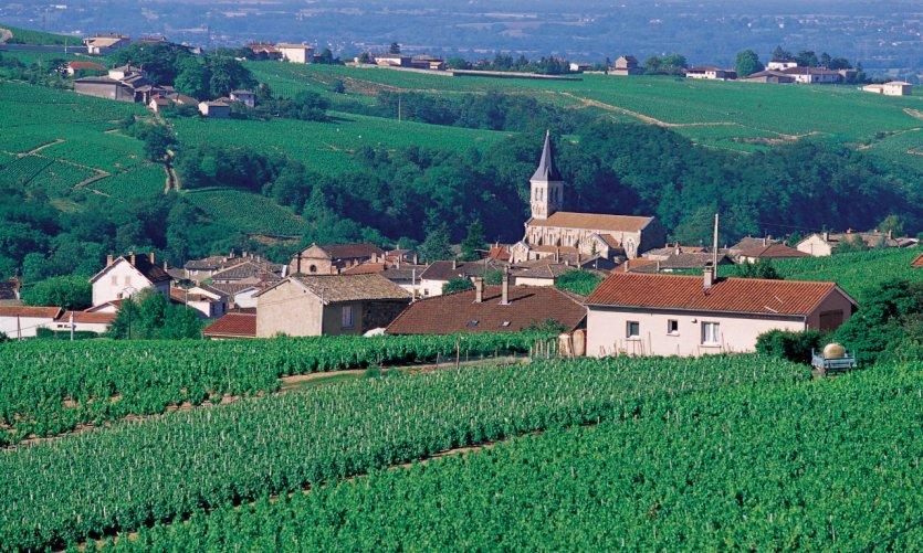 Vue du village de Juliénas, entouré de son vignoble