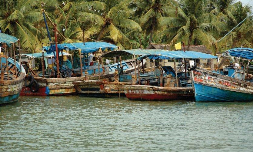 Bateaux de pêche des backwaters du Kerala.