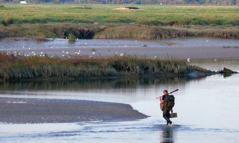 Pêcheur à pied dans la baie d'Authie