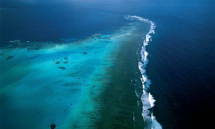 Récif corallien.