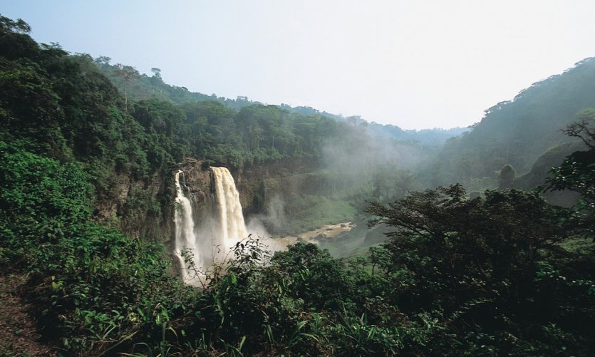 Les chutes d'Ekom Nkam.