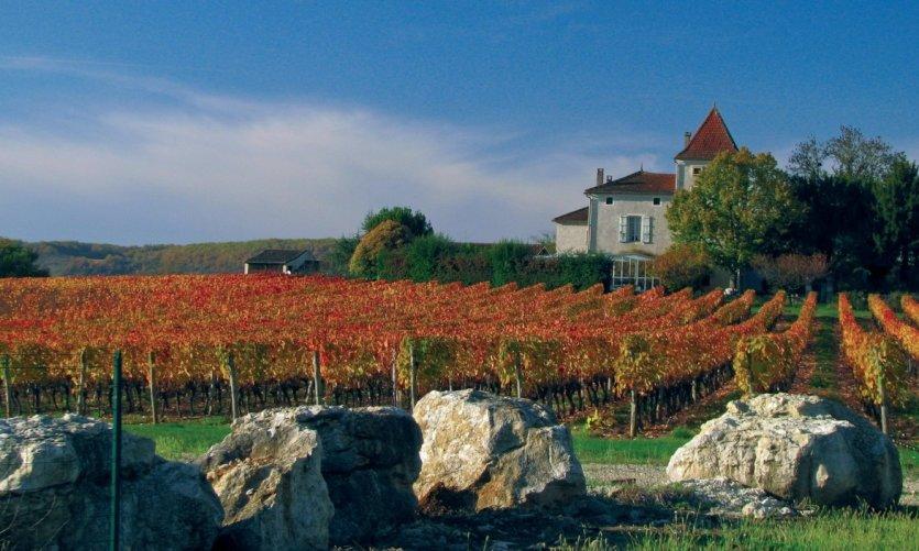 Domaine viticole dans le Lot-et-Garonne