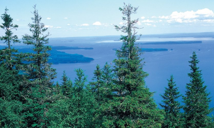 La Finlande des 1 000 lacs