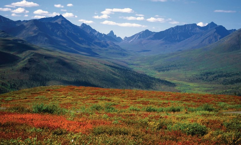<p>Tombstone Mountains since Dempster Highway</p>