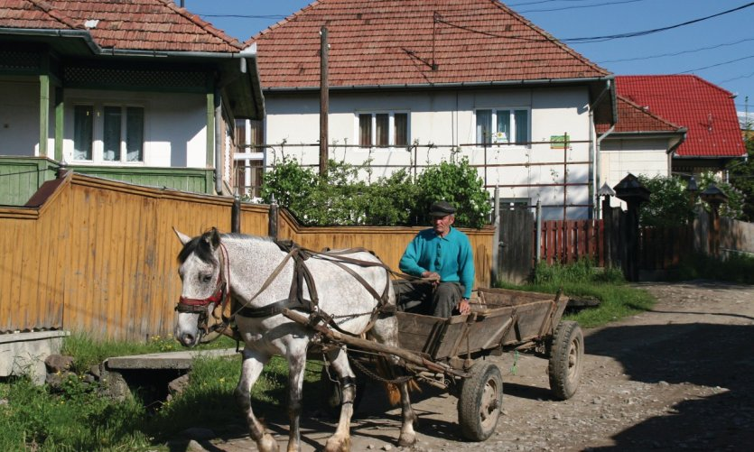 Le cheval et la cariole demeurent un moyen de transport très courant dans les petites villes de Roumanie.