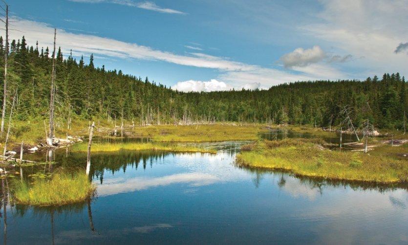<p>Lac au parc national du Fjord-du-Saguenay.</p>