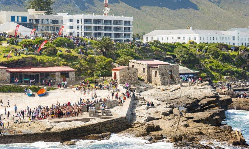 Hermanus whale festival.