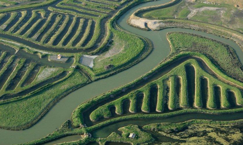 Marais du Payré et du Veillon