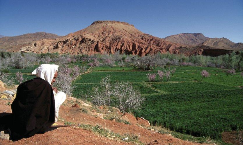 La vallée du Dadès.