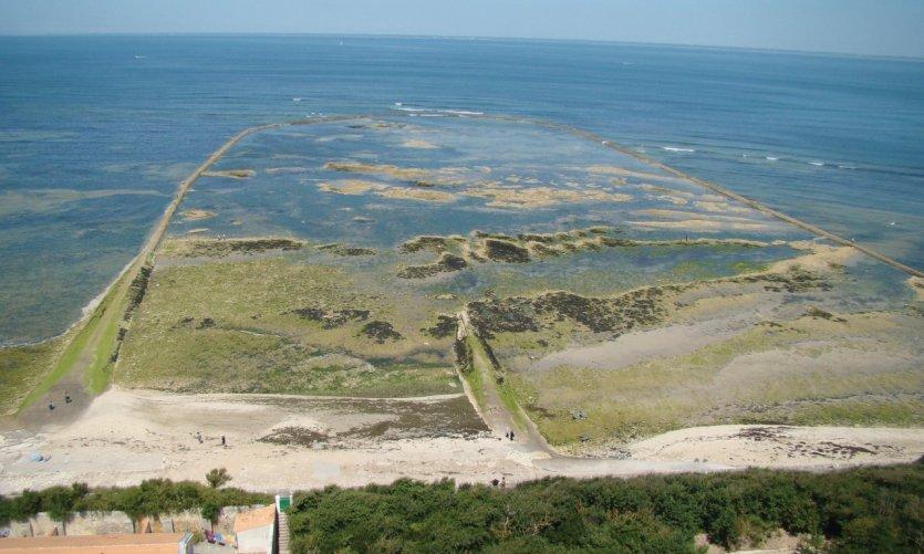 Écluse à poissons à Saint-Clément-des-Baleines