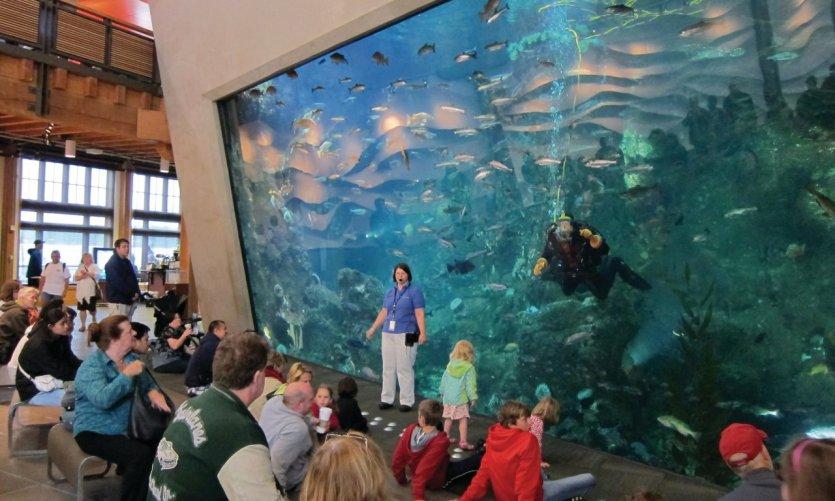Aquarium de Seattle.