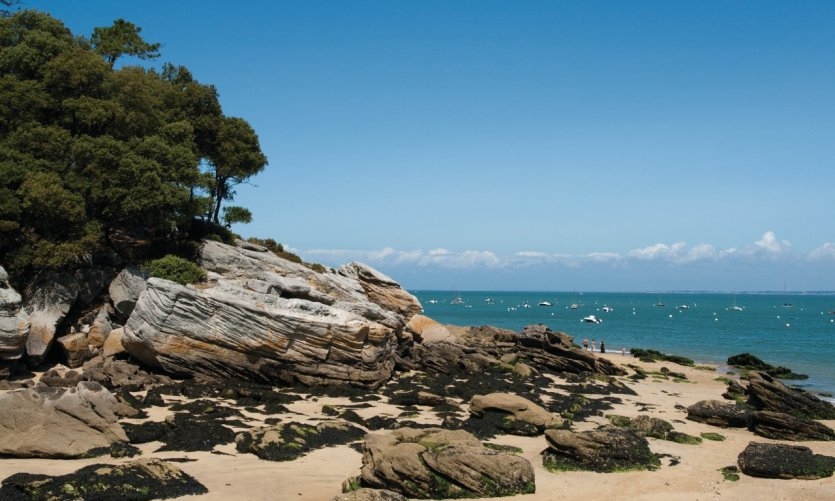 Noirmoutier en l 39 ile guide actualit adresses avis petit fut - Hotel noirmoutier en ile ...