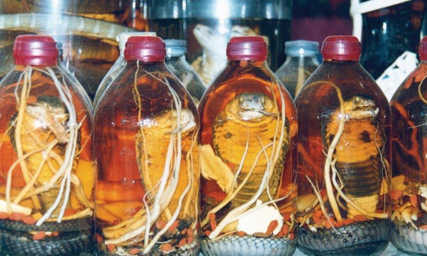 L'alcool de serpent, un apéritif local.